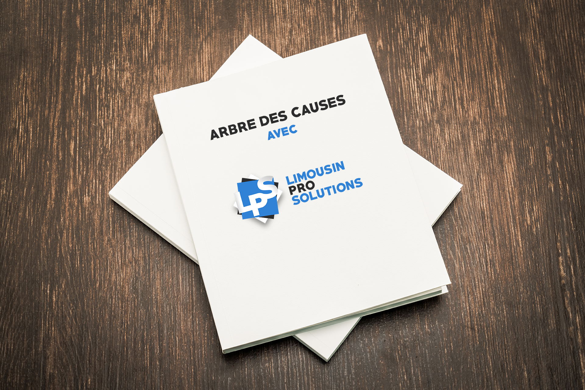 Document limousin pro solutions arbre des causes